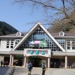 大井川天空の秘境駅と夢の吊橋へ!トロッコ列車とSLの旅をもしもツアーズでおすすめ